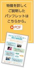 特徴を説明したPDFパンフレット